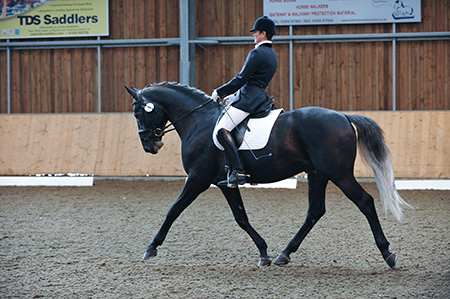 dressage photographer